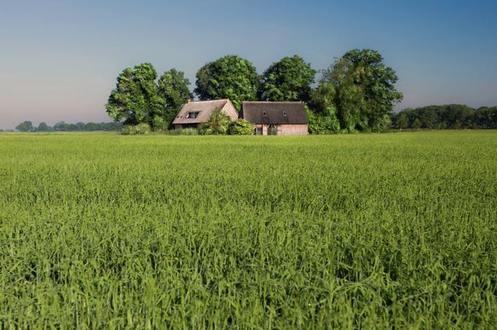 De Wilmsboo anno 2016, gefotografeerd vanaf het Schoonebekerdiep. De nieuw opgebouwde boo wordt bewoond door een kunstenaarsechtpaar en is tevens officiële trouwlocatie van de gemeente Emmen. De herbouwde hooischuur is ingericht als vakantiehuisje. (Foto: Saskia Boelsums)