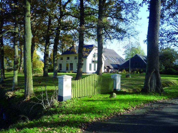 Weehorst was een belangrijke boerenplaats die al in stukken vanaf 1645 wordt genoemd. Nazaten van advocaat Johannes Krijthe hebben hier lang gewoond. De gemeentegrens met Peize lag niet bij het Peizerdiep, maar langs het meer oostelijk gelegen Oude Diep, nu een smal slootje. De boerderij stond vroeger op het perceel aan de andere kant van het fietspad.