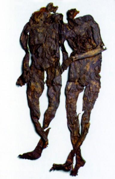 Het paar van Weerdinge
